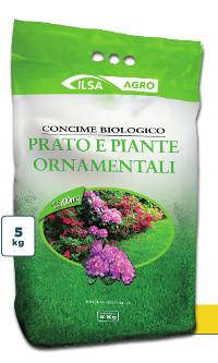 Ilsa Prato e piante ornamentali