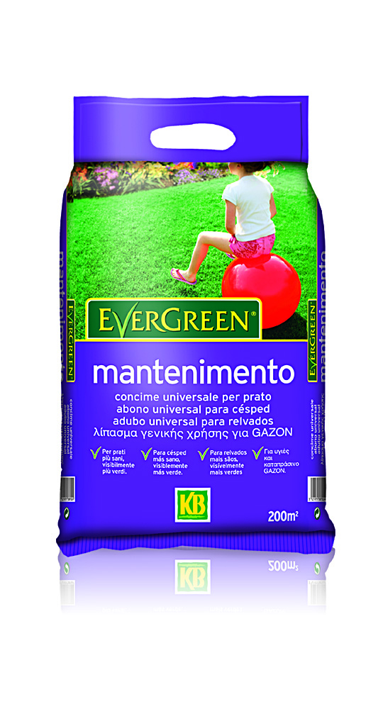 Ital-Agro Evergreen Mantenimento